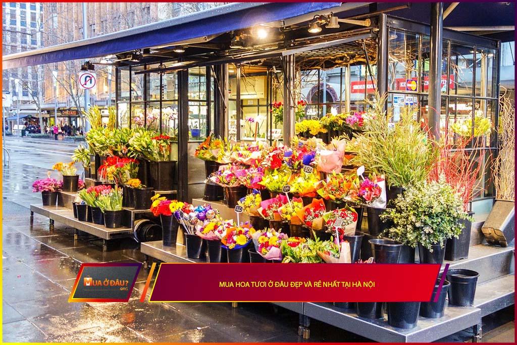 Mua hoa tươi ở đâu đẹp và rẻ nhất tại Hà Nội