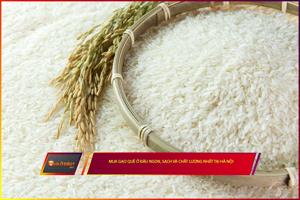Mua gạo quê ở đâu ngon, sạch và chất lượng nhất tại Hà Nội?